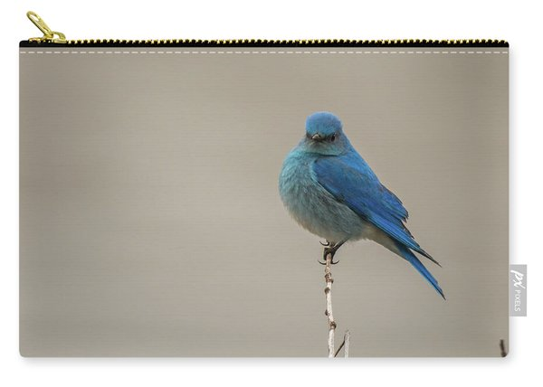 Carry-all Pouch featuring the photograph B52 by Joshua Able's Wildlife