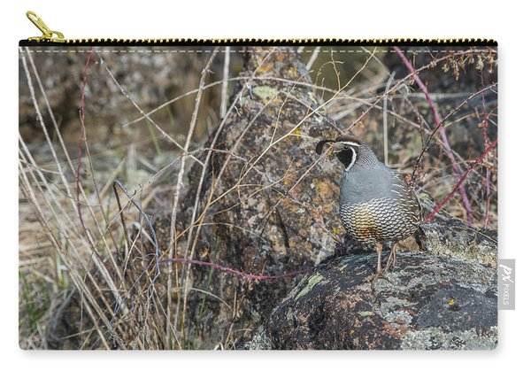 Carry-all Pouch featuring the photograph B53 by Joshua Able's Wildlife