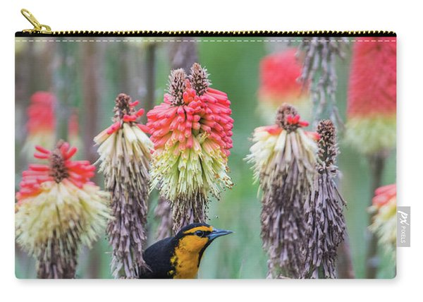 Carry-all Pouch featuring the photograph B58 by Joshua Able's Wildlife