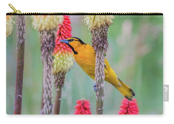 Carry-all Pouch featuring the photograph B59 by Joshua Able's Wildlife