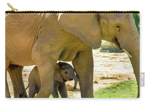 Baby's Safe House Carry-all Pouch
