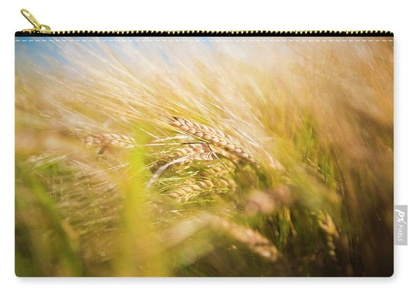 Background Of Ears Of Wheat In A Sunny Field. Carry-all Pouch