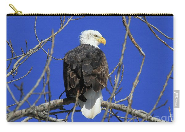 Bald Eagle And Blue Sky Carry-all Pouch
