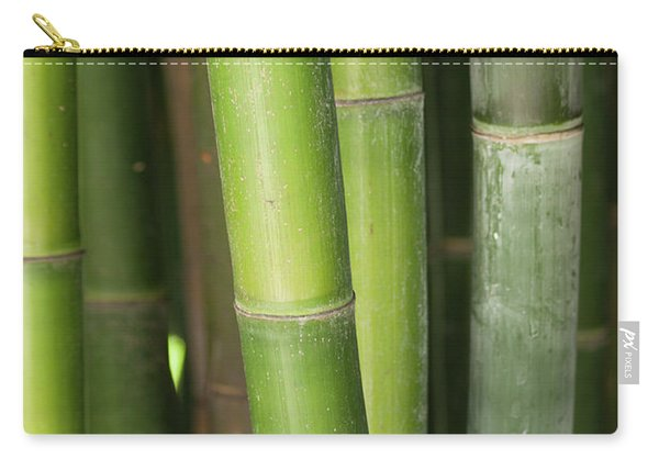 Bamboo Stalk 4057 Carry-all Pouch