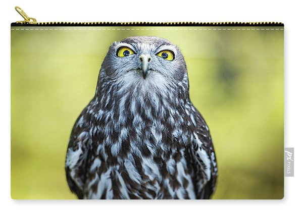 Carry-all Pouch featuring the photograph Barking Owl by Rob D Imagery