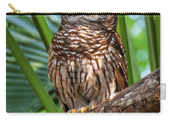 Barred Owl On Perch Carry-all Pouch