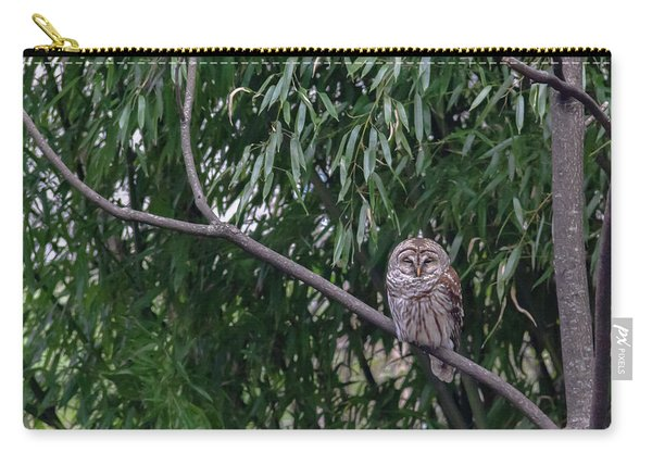 Barred Owl Squared Carry-all Pouch