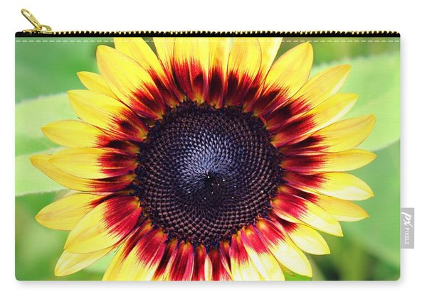 Carry-all Pouch featuring the photograph Be Bold by Candice Trimble