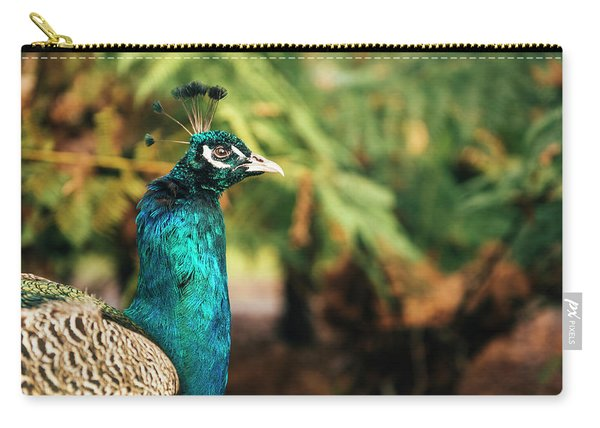 Beautiful Colourful Peacock Outdoors In The Daytime. Carry-all Pouch