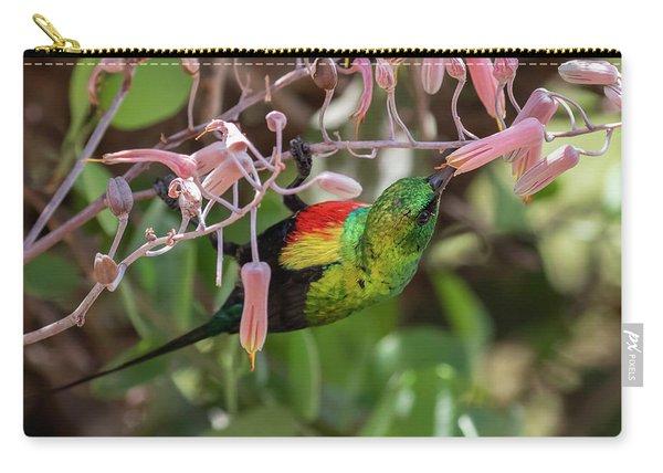Beautiful Sunbird Carry-all Pouch