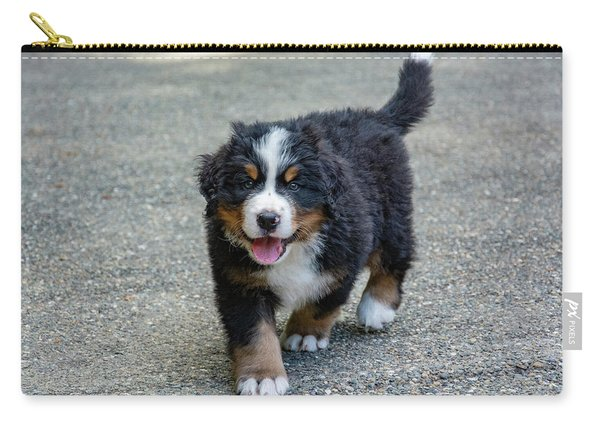 Bernese Mountain Dog Puppy 2 Carry-all Pouch