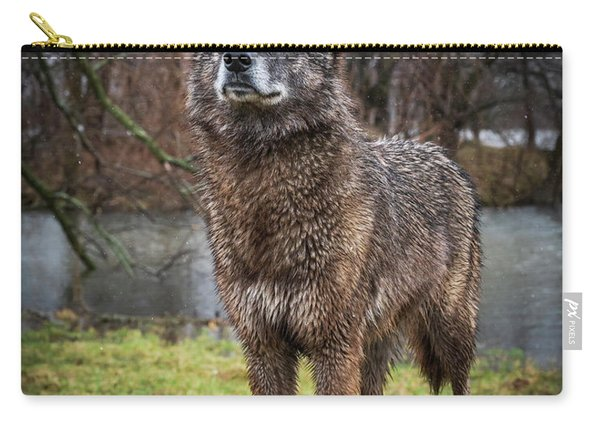 Best Of Show Pose Carry-all Pouch