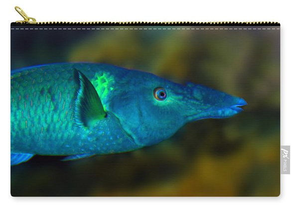 Bird Wrasse Carry-all Pouch