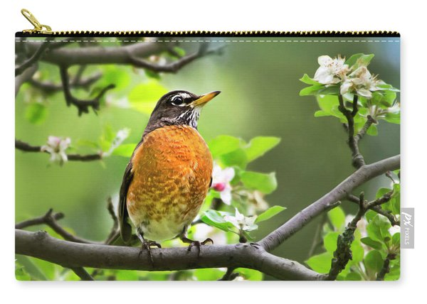 Birds - American Robin - Nature's Alarm Clock Carry-all Pouch