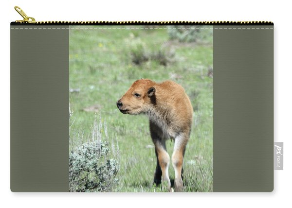 Carry-all Pouch featuring the photograph Bison Calf In Lamar Valley by Jean Clark