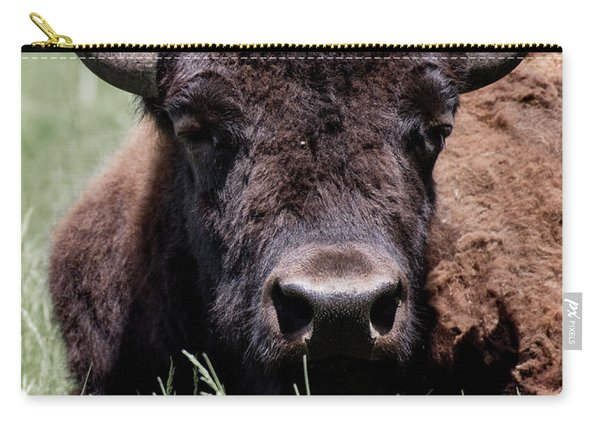 Bison In Custer State Park South Dakota Carry-all Pouch