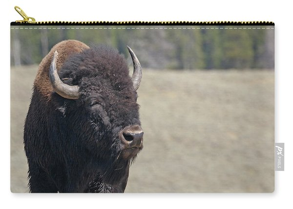 Carry-all Pouch featuring the photograph Bison In Hayden Valley by Jean Clark