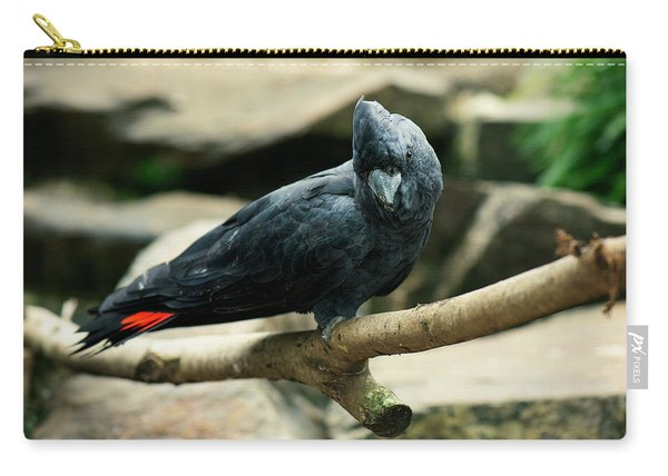Black And Red Cockatoo. Carry-all Pouch