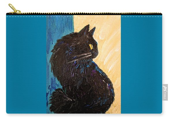 Black Cat In Sunlight Carry-all Pouch