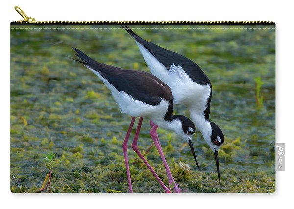 Black-necked Stilts Carry-all Pouch