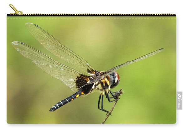 Black Saddlebags Dragonfly Carry-all Pouch