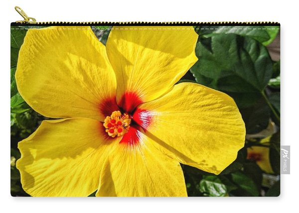 Bloom And Shine Carry-all Pouch