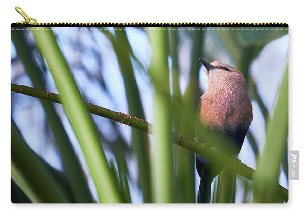 Carry-all Pouch featuring the photograph Blue-bellied Roller by Whitney Goodey