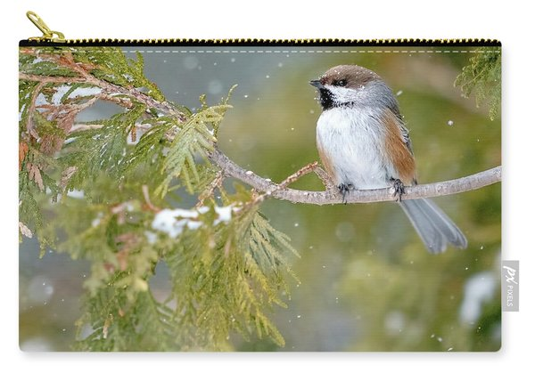 Boreal Chickadee In Winter Carry-all Pouch
