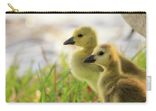 Boston Goslings Carry-all Pouch