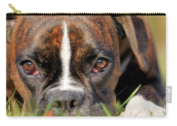 Boxer Dog Face Carry-all Pouch