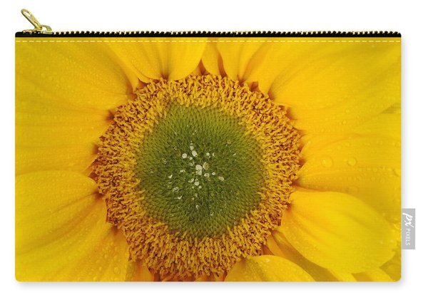 Nature's Sunshine Carry-all Pouch