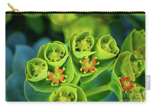Carry-all Pouch featuring the photograph Brilliance In The Desert by Susan Warren