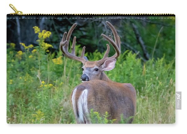Buck At Hunter Cove Carry-all Pouch