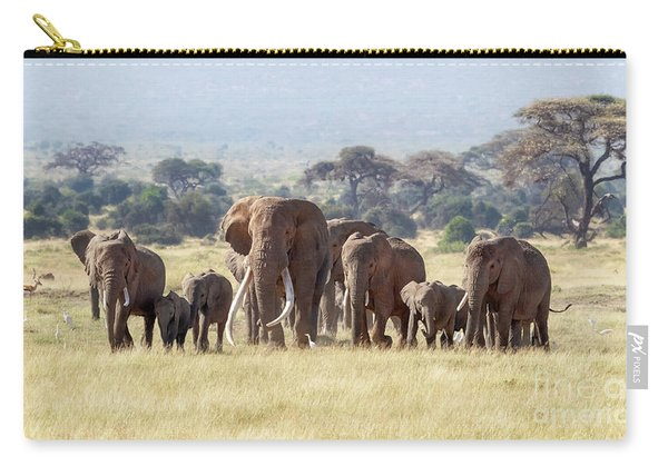 Bull Elephant With A Herd Of Females And Babies In Amboseli, Kenya Carry-all Pouch