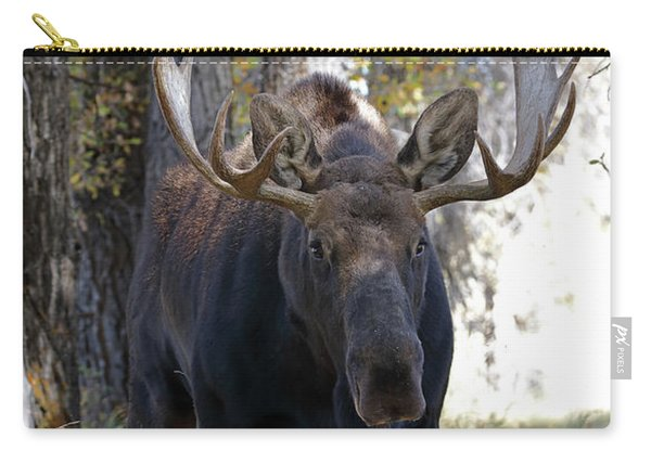 Bull Moose Approaching Carry-all Pouch