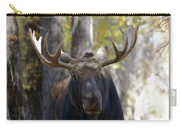 Carry-all Pouch featuring the photograph Bull Moose Close Up by Jean Clark