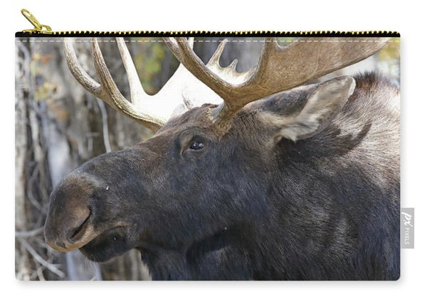 Bull Moose Study Carry-all Pouch