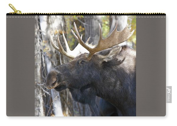 Carry-all Pouch featuring the photograph Bull Moose Study by Jean Clark