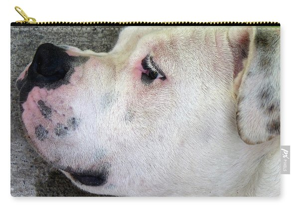 Bulldog Rana Portrait 25 Carry-all Pouch
