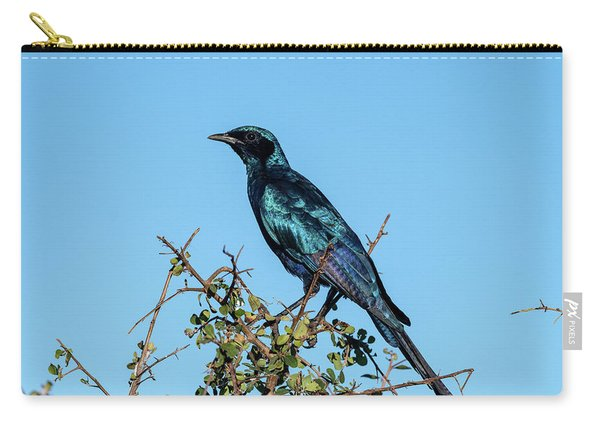 Burchell's Starling Carry-all Pouch