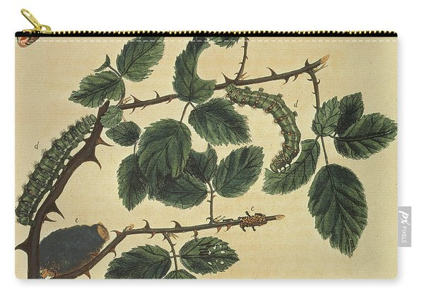 Butterflies, Caterpillars And Plants Plate 1 Carry-all Pouch