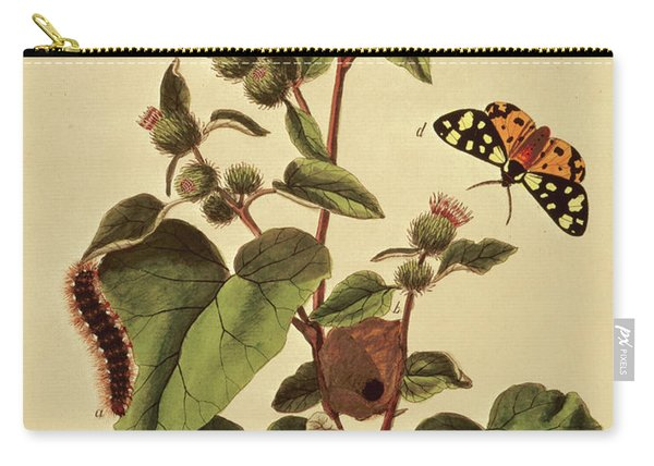 Butterflies, Caterpillars And Plants  Plate Vii Carry-all Pouch