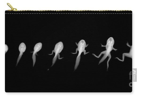 C037/4695 Carry-all Pouch