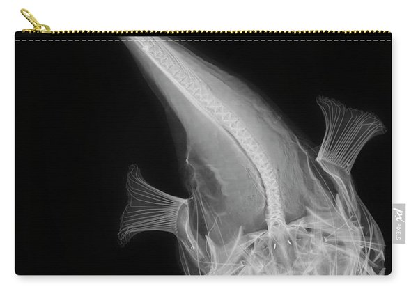 C038/4641 Carry-all Pouch