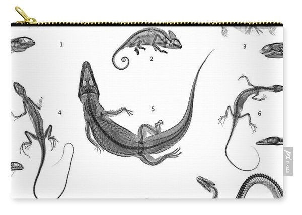C038/4731 Carry-all Pouch