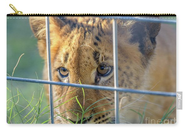 Carry-all Pouch featuring the photograph Caged by Dheeraj Mutha