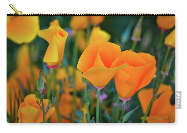 California Poppies Lake Elsinore Carry-all Pouch