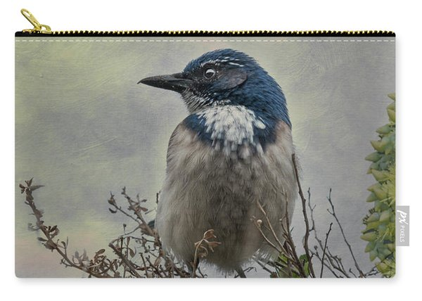 California Scrub Jay - Vertical Carry-all Pouch