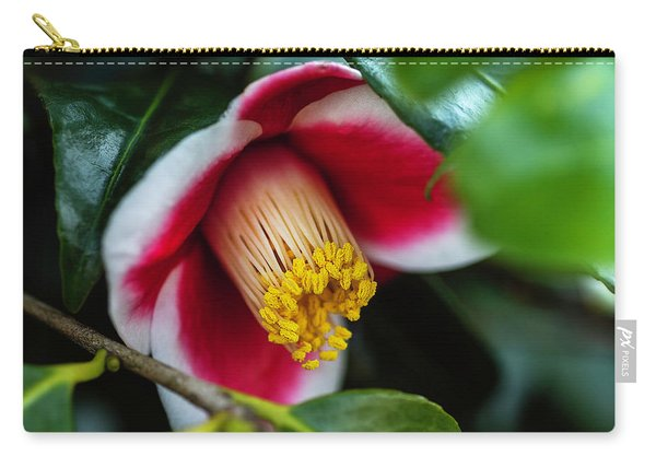 Camellia Bloom And Leaves Carry-all Pouch