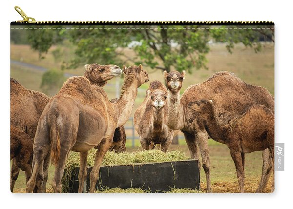 Carry-all Pouch featuring the photograph Camels Out Amongst Nature by Rob D Imagery